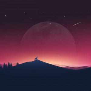 Lovely-Moon-Night-Wallpaper